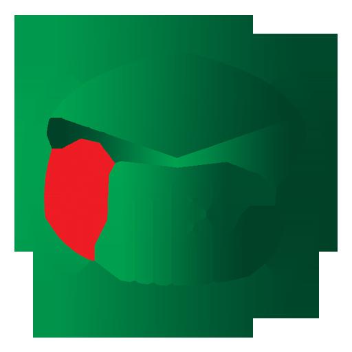 Mel Educational Services